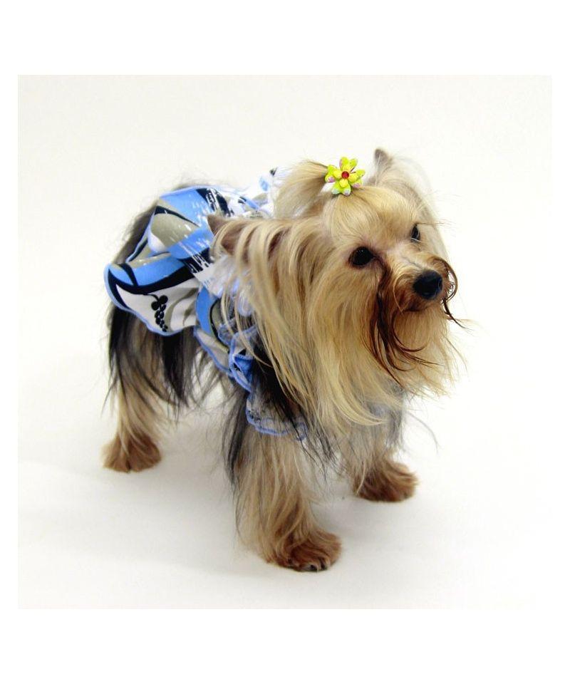 robe pour grande chiene robe chienne originale pret porter pour chienne robe pour chien. Black Bedroom Furniture Sets. Home Design Ideas