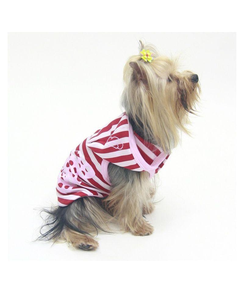 d bardeur pour chien a capuche fun et pas cher chihuahua yorkshire bichon sharpei bulldog. Black Bedroom Furniture Sets. Home Design Ideas