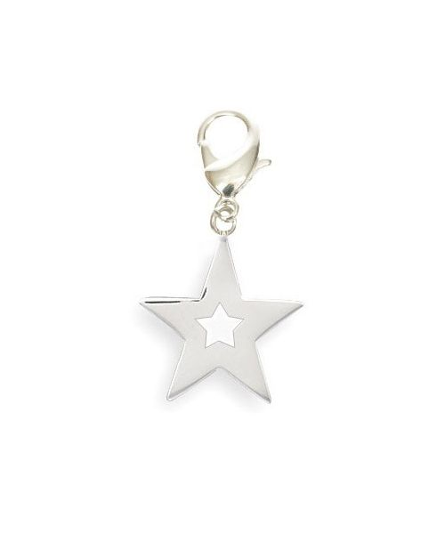 Pendant star to hang on the collar of your dog, cat, keychain...Delivery: Corse, Ajaccio, Bastia, Porto Vecchio...