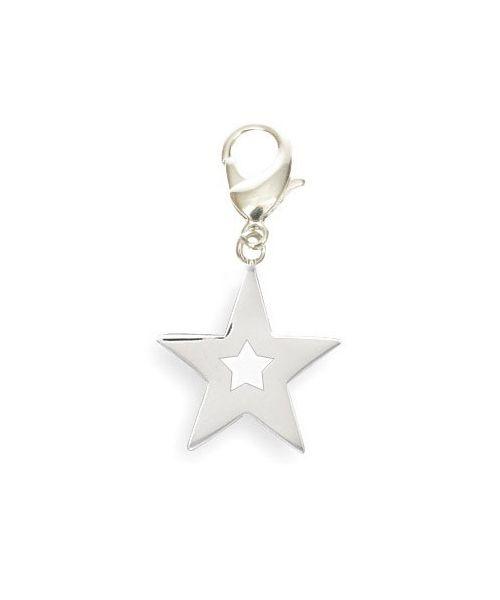 Pendant star to hang on the collar of your dog, cat, keychain...Delivery: Corse, Ajaccio, Bastia, Porto Vecchio...