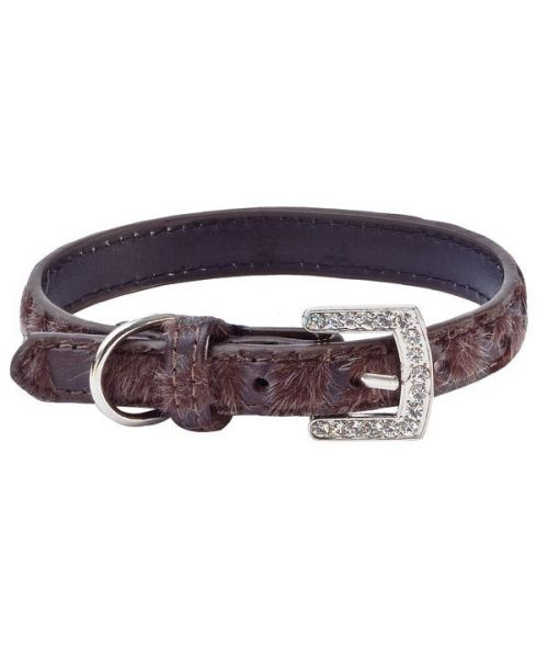 Padded leather rhinestone for small dog and cat brown leather fur fashion design shop animals