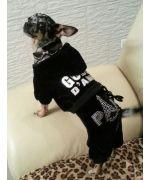 Jogging velour noir Gueule d'amour avec strass Paris en vente sur notre boutique en ligne pour chien et chat