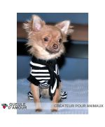 Sailor Chihuahua with coat with legs and matching sailor bandana very cute on our original dog and cat shop