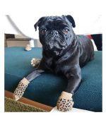 Chaussette petite taille pour petit chien en vente sur Paris, Lyon, Marseille, Montpellier, Toulouse, Besançon, Nice, Cannes...
