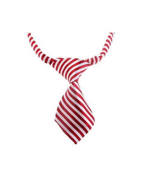 Tie-stripe red and white dog and cat not expensive mouth d love