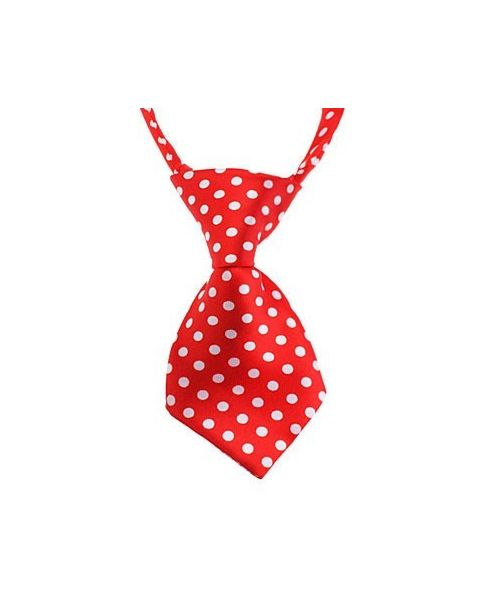 Tie red and white polka dot dog cat puppy kitten rabbit child perfect disguise for carnival Nancy shop animals