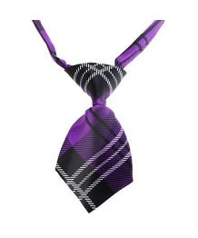 Tie Scottish purple