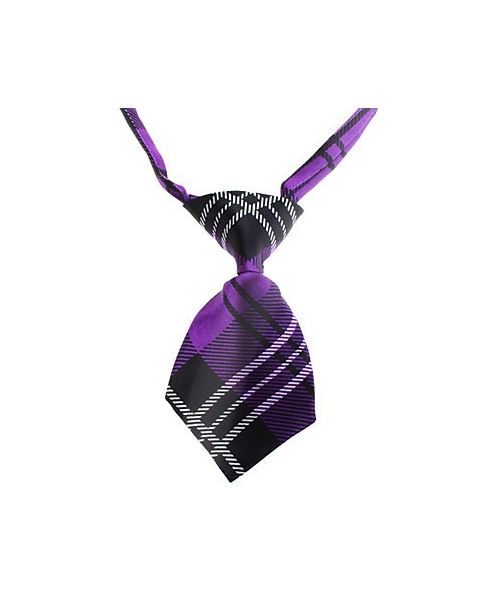 Tie purple chic cat dog child deguisement pas chere Nancy, Metz, Lorraine, Meurthe et moselle