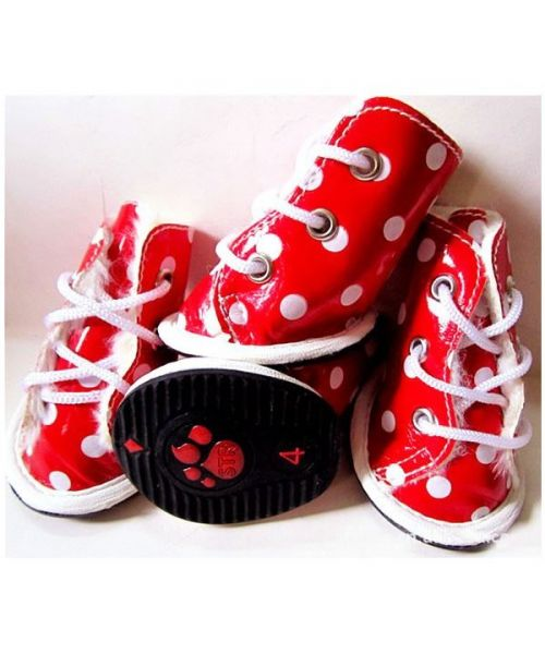 Lot of 4 shoes polka dot red - Dog and cat