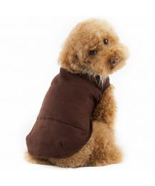 Fancy coat - brown Dog