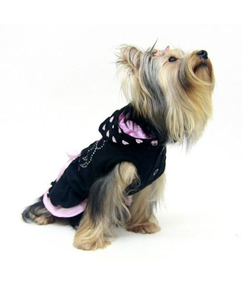 Party dress black for a small and large dog with crystal and rhinestone on the back and small hood to hearts on Marseille, Metz.