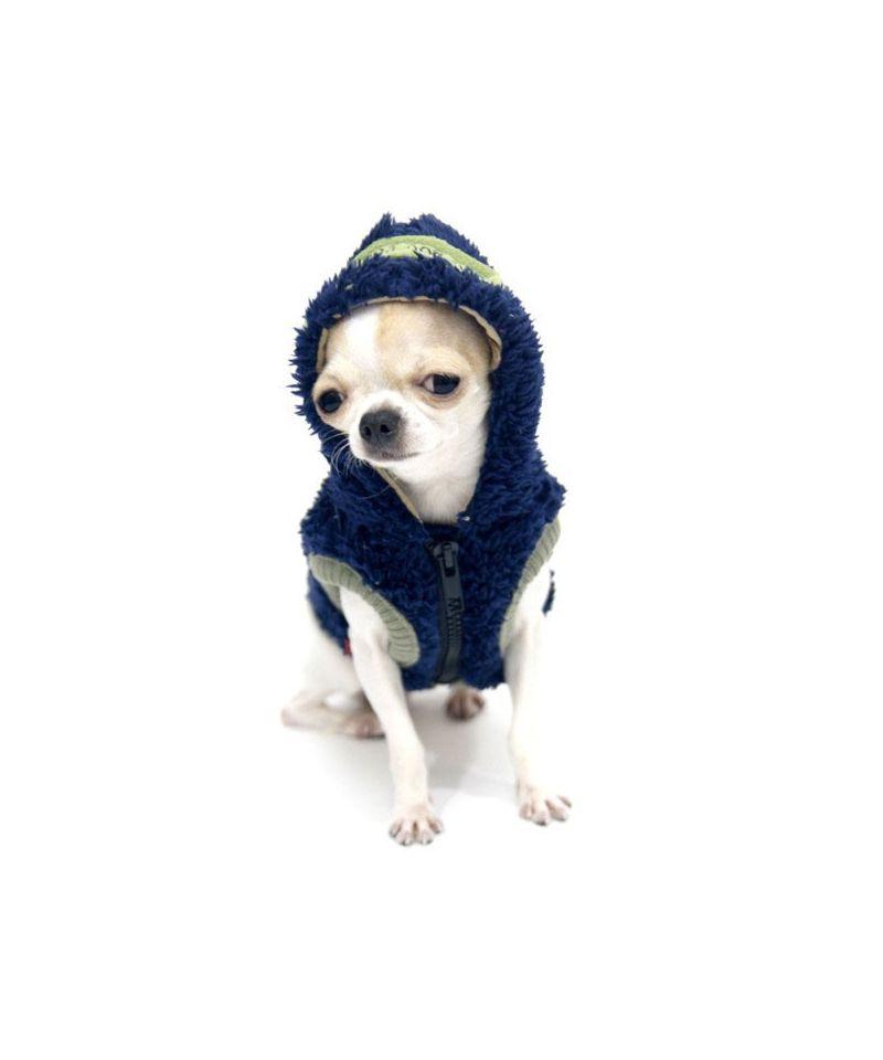 Vetement pour chien offrez des v tements votre chien gueule - Laine pas chere en ligne ...