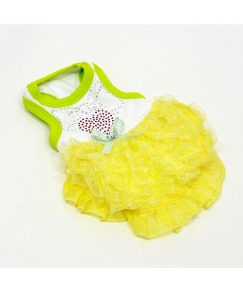 acheter robe de soirée pour chien de petite et grande taille sur notre boutique spécialisée pour animaux de compagnie fashion
