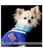 sale sweater for chihuahua size xxs, xs, s for small and mini dog cat in specialty shop animals small size