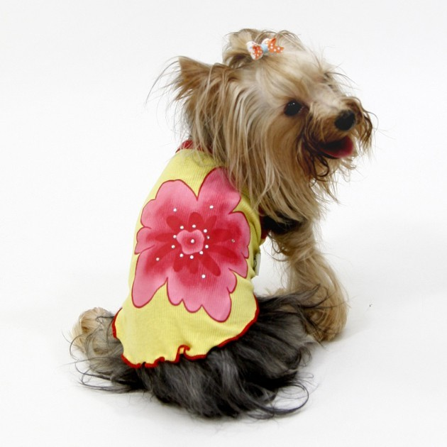 Original yellow lotus flower tank top for miniature breed, special cheap mini dog for unique cado