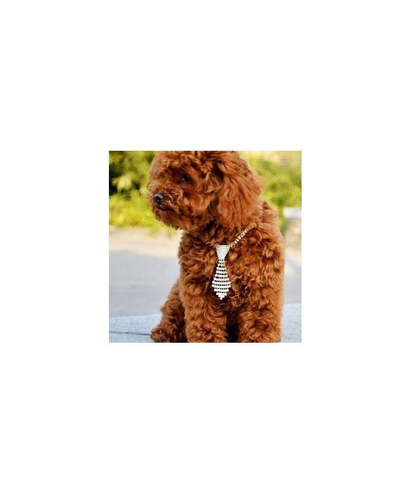 gueule d 39 amour cravates pour chiens et chats gueule d. Black Bedroom Furniture Sets. Home Design Ideas