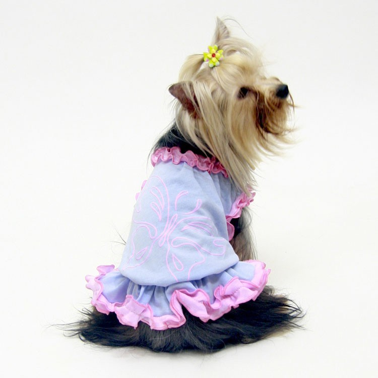 Clothing for poodle, westie, french bulldog original and cute on our online store for animals mouth of love