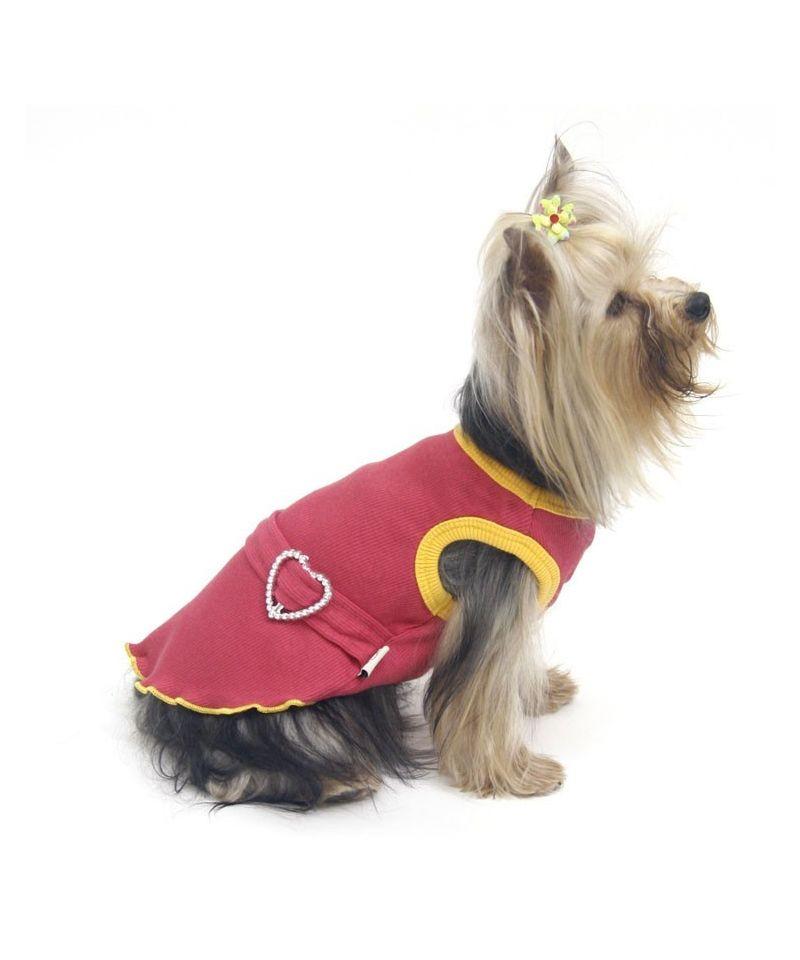 robe pour chien robe chien fashion robe chihuahua petite robe pour chien. Black Bedroom Furniture Sets. Home Design Ideas