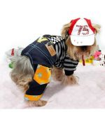 Cap size XXS, XS, S, M, L, XL, 2XL, 3XL, 4XL, dog and cat, ideal to protect the eyes of your dog or cat