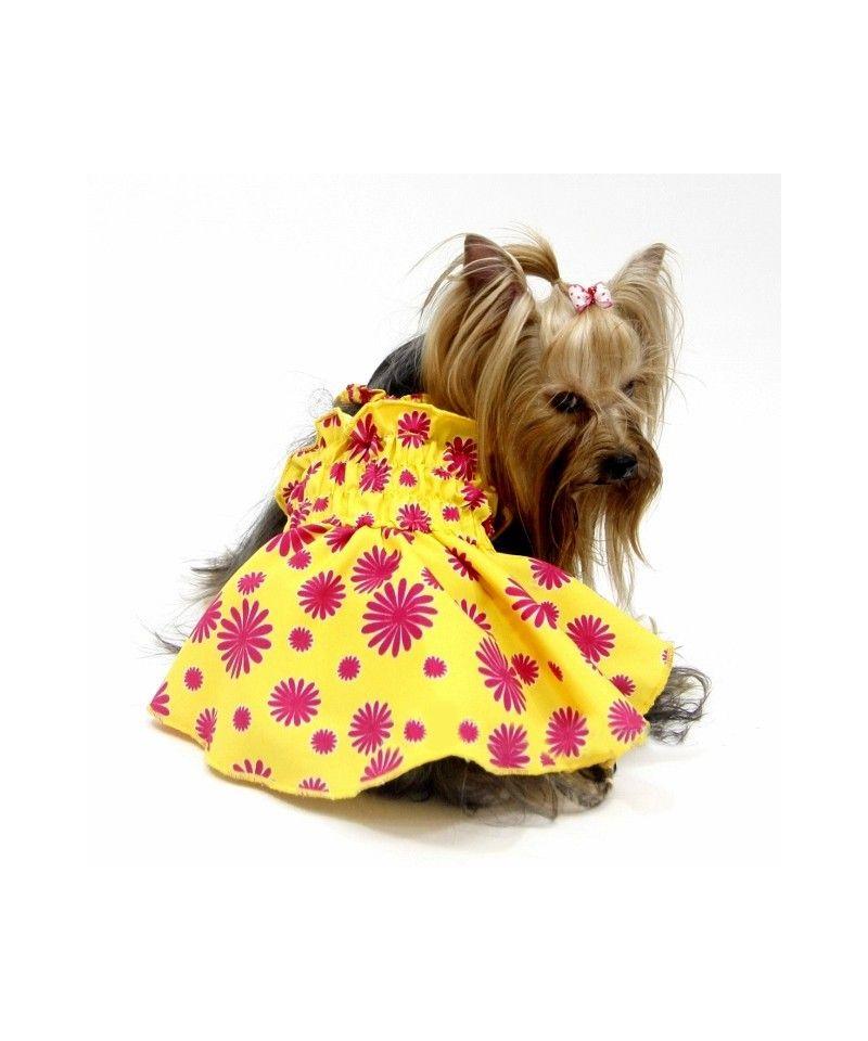 Habit d39ete pour chien petit prix gueule d39amour for Petites robes pas chères