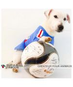 T-shirt pour chien de football - France