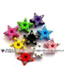 Small star for collar and harness customizable