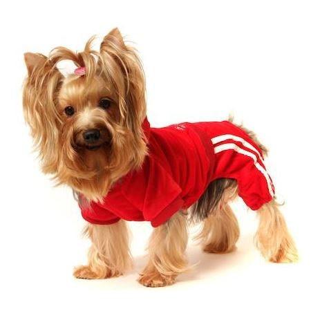 acheter jogging rouge chien taille xs s m l xl xxl pour mini petit grand chien et chiot cadeau noel www.gueule-damour.com