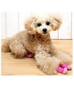 Sock large size for large breed dog in Paris, Lyon, Marseille, Montpellier, Toulouse, Besançon, Nice, Cannes...