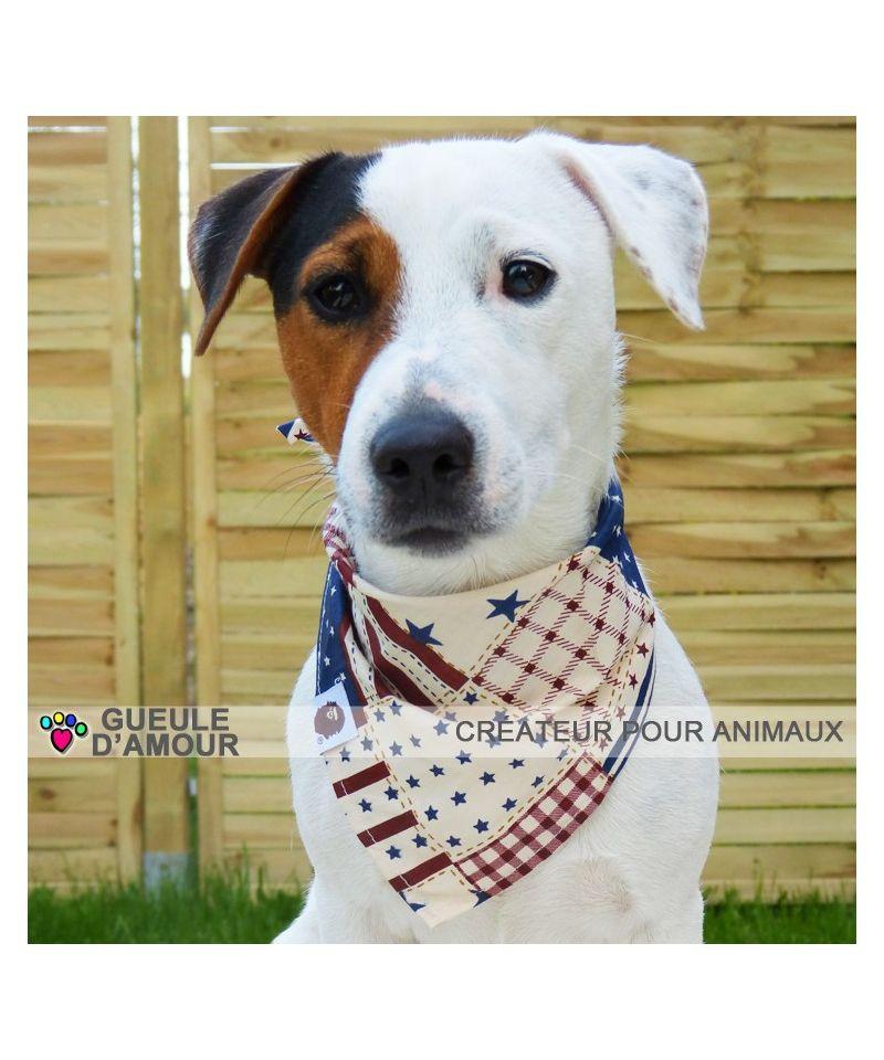 Panier Pour Jack Russel Pas Cher : Accessoires pour chien lyon