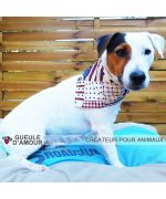 Diego jack russell with bandana fashion america ultra cute dog free shipping mouth d love