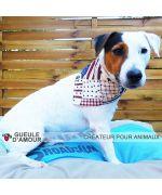 Diego jack russel avec bandana fashion america ultra mignon pour chien livraison gratuite gueule d amour