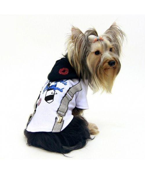 chic and fashionable large dog hoodie sale: bulldog, sharpei, dalmatian, husky, sheepdog, dachshund, beagle