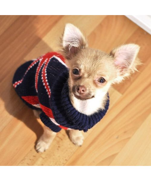 embroidered union jack cheap and fashion sale on online shop for pets not expensive