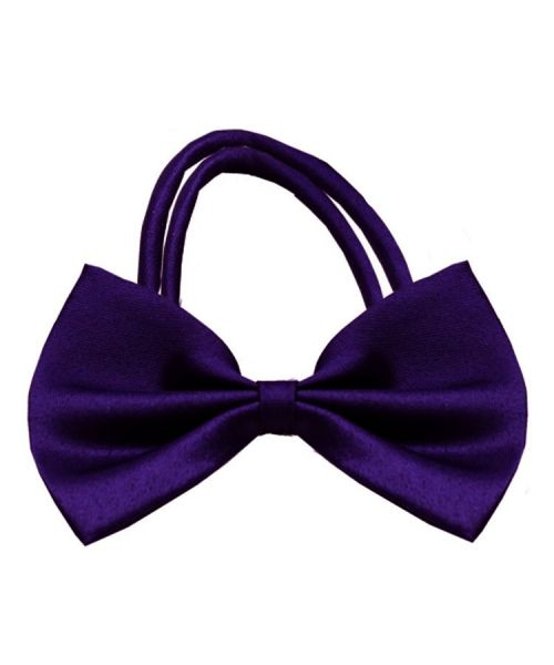 bow tie purple class chic child animal cat dog mouth d love