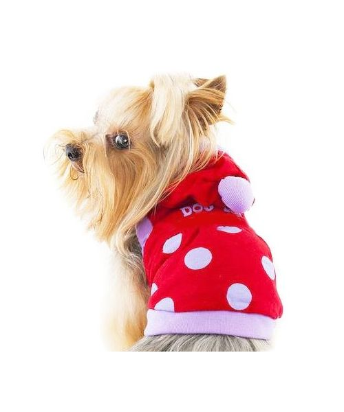 red coat dog autumn gueule d'amour polka dot cute