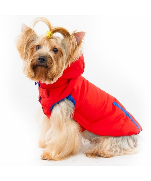 rain coat for dog small medium large breed pets cheap fashion hoodie cute