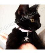 Pendentif strass tête de mort - Chien et chat