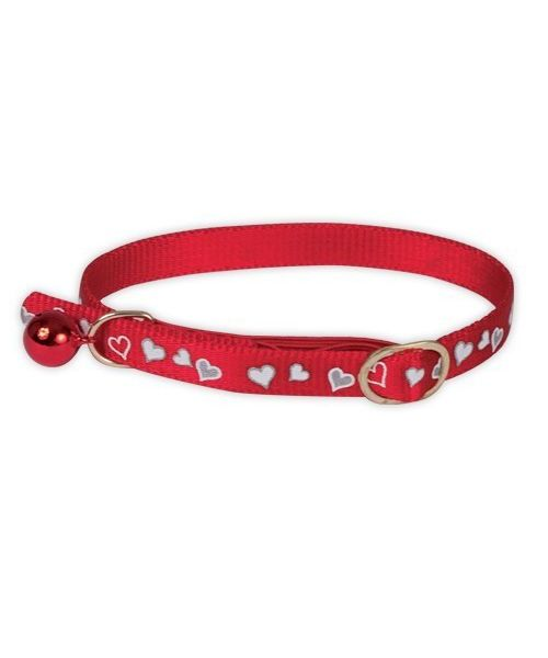 Collar reflechissant the night for a cat not expensive shop pet shop online
