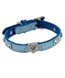 Collar rhinestone effect velour - Dog and cat