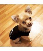 Tee shirt pas cher pour fox terrier, carli, jack russel, caniche, bichon, westie, chihuahua, yorkshire terrier