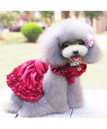 Robe rouge pour chiens et chats pour cérémonie