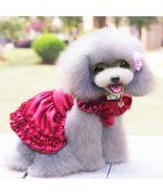 obe rouge pour chienne mariage fete anniversaire adorable pas cher deguisement soirée