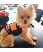 gilet de sauvetage orange chien chat gueule d amour boutique fun animaux de compagnie cadeaux