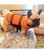 bouledogue portant un gilet de sauvetage boutique gueule d amour chien chat
