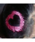 heart sequin dog gel application on hair pink or green christmas