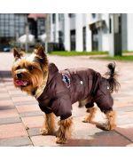 chien portant une combinaison à pattes trop mignon