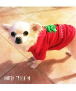petite chihuahua adorable portant pull de noel taille M rouge à capuche sapin