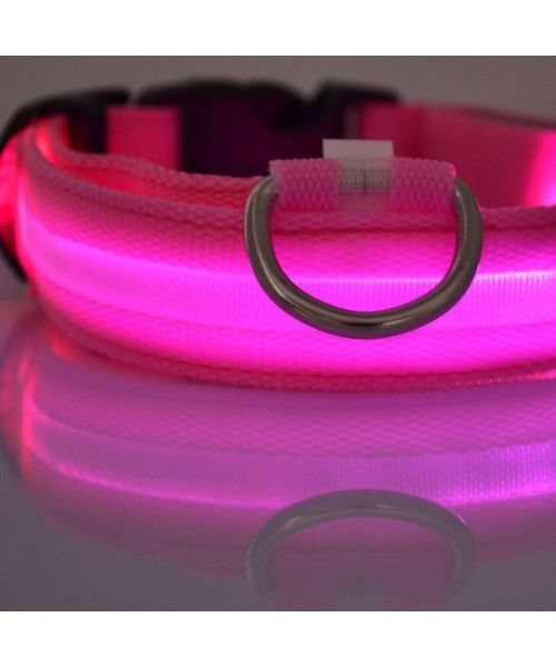 collar bright pink for small dog