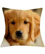 cushion labrador bebe puppy, too cute for house gift original fan of dogs