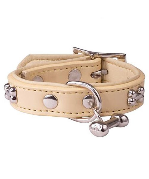 beige-collar-for-dogs-small-and-large-with-bone-in-metal.jpg